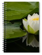 Water Lily Reflection II Spiral Notebook