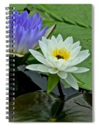 Water Lily Serenity Spiral Notebook