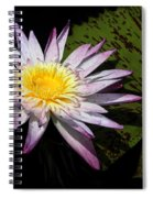 Water Lily With Lots Of Petals Spiral Notebook