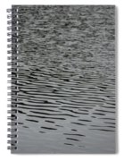 Water Lines Spiral Notebook