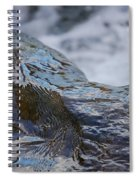 Water Mountain 2 By Jrr Spiral Notebook
