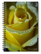 Water Of Love Spiral Notebook