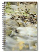 Water Over The Dike Spiral Notebook