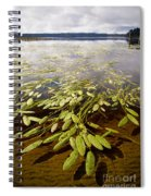 Water Plant Spiral Notebook