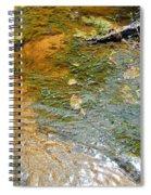 Water Plants 2 Spiral Notebook