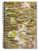 Water Reflection Spiral Notebook