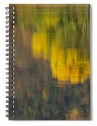 Water Reflections Abstract Autumn 2 B Spiral Notebook