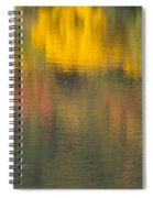 Water Reflections Abstract Autumn 2 C Spiral Notebook