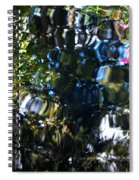 Water Reflections 8 Spiral Notebook