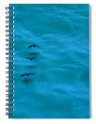 Water Skimmers Spiral Notebook