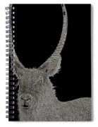 Waterbuck B W Abstract Spiral Notebook