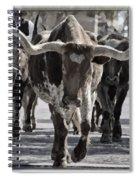 Watercolor Longhorns Spiral Notebook