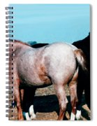 Watercolor Mustangs Spiral Notebook