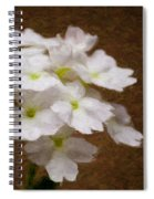 Watercolor Of Daisies Spiral Notebook