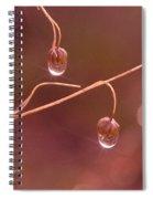 Waterdrop Haiku Spiral Notebook