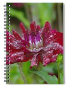 Waterdrops On Petals  Spiral Notebook