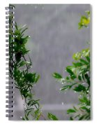 Watered By Nature Spiral Notebook