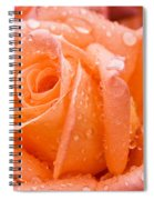 Watered Rose Spiral Notebook