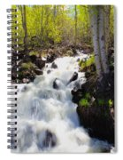 Waterfall By The Aspens Spiral Notebook