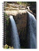 Waterfall From The Top Spiral Notebook