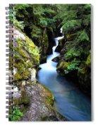 Waterfall, Glacier National Park Spiral Notebook