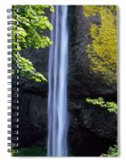 Waterfall In A Forest, Latourell Falls Spiral Notebook