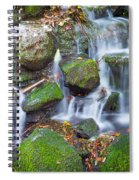 Waterfall In Marlay Park Spiral Notebook