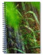 Waterfall Over Ferns Spiral Notebook