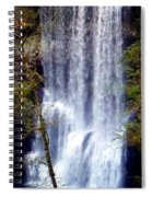 Waterfall South Spiral Notebook
