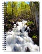 Waterfall Through The Aspens Spiral Notebook