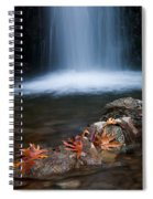 Waterfall And Leaves In Autumn Spiral Notebook