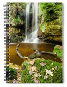 Waterfall With Autumn Leaves Spiral Notebook