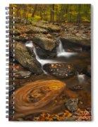 Waterfalls And Swirl Spiral Notebook
