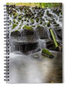 Waterfalls In Marlay Park Spiral Notebook