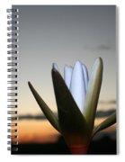 Waterlilly 3 Spiral Notebook