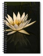 Waterlilly 6 Spiral Notebook