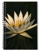 Waterlilly 7 Spiral Notebook
