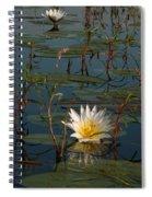 Waterlilly 8 Spiral Notebook