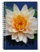 Waterlily After A Shower Spiral Notebook