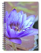 Waterlily And Bee Spiral Notebook