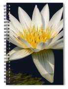 Waterlily And Pad Spiral Notebook