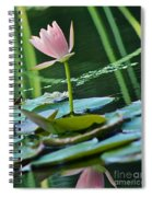 Waterlily Whimsy Spiral Notebook
