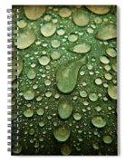 Raindrops On Watermelon Rind Spiral Notebook