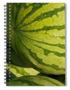 Watermelons Spiral Notebook