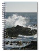 Wave Action Spiral Notebook