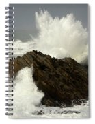 Wave At Shore Acres Spiral Notebook