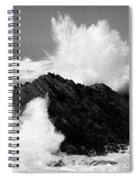 Wave At Shore Acres Bw Spiral Notebook
