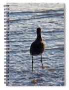 Wave Walking Spiral Notebook