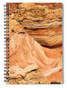 Waves And Twists Spiral Notebook