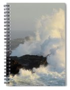 Waves At Salt Point Spiral Notebook
